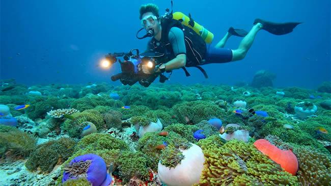 Hurawalhi resort diving with mantas