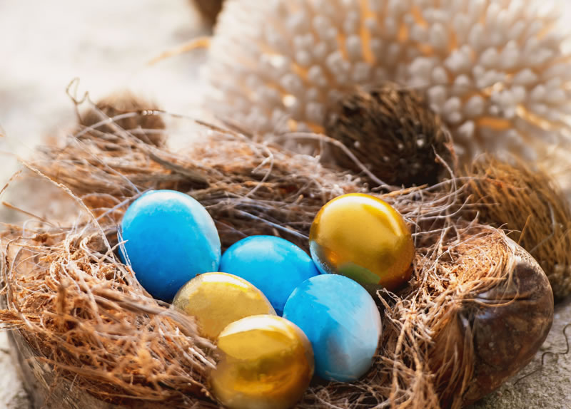 Coco Collection Announces The Easter Programm 2019