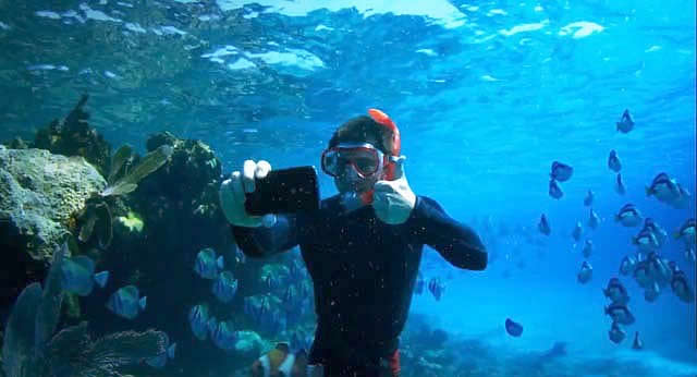 underwater selfie maldives