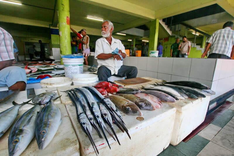рыбный рынок в мале, мальдивах