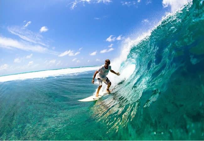 Снорклинг на Домашнем Рифе