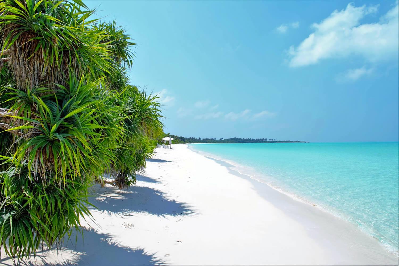 the beach, maldives budget trip