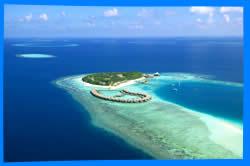 Мальдивы, отель на Мальдивах, отли Мальдив, отдых на Мальдивах, фото Мальдивы, туры на Мальдивы, дешевые авиабилеты на Мальдивы, Мальдивские острова, ресторан, еда, ночной клуб, пляж, номер в отеле на Мальдивах, медовый месяц,  на мальдивах