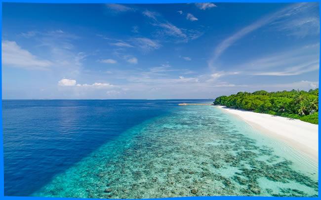 amilla fushi house reef