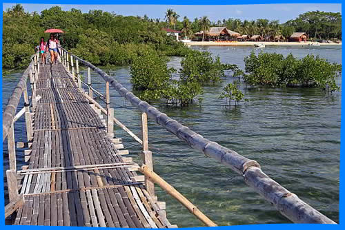 cebu olango island group Olango island group - the olango island group is a group of islands found in the central visayas region of the philippines it comprises olango island and 6 satellite islets namely: sulpa, gilutongan.